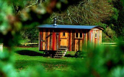 Tiny House bauen – der Traum vom eigenen Minihaus